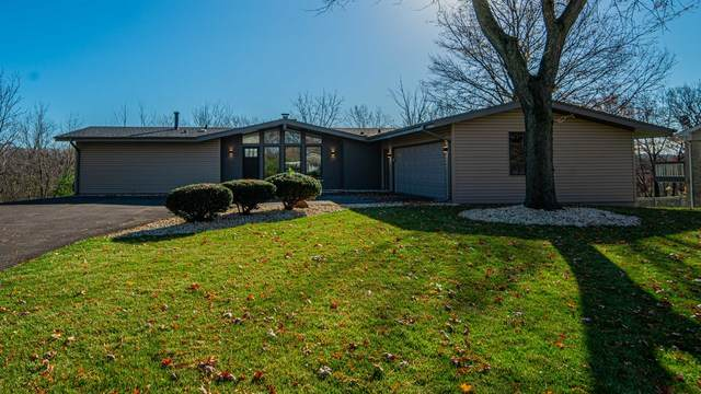 232 Denell Drive, Crete, IL 60417 (MLS #10932979) :: BN Homes Group