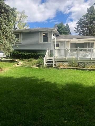 4401 Kingston Avenue, Lisle, IL 60532 (MLS #10933235) :: Helen Oliveri Real Estate