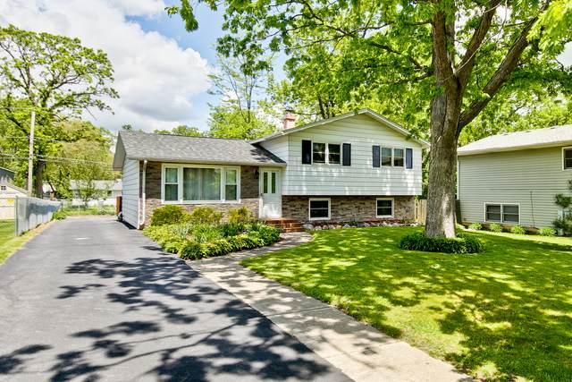 17898 W Twin Lakes Boulevard, Grayslake, IL 60030 (MLS #10933445) :: Littlefield Group