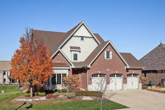 13894 Stonebridge Woods Crossing, Homer Glen, IL 60491 (MLS #10933493) :: Lewke Partners