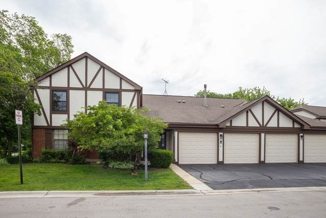 369 Ferndale Court B2, Schaumburg, IL 60193 (MLS #10933502) :: The Wexler Group at Keller Williams Preferred Realty