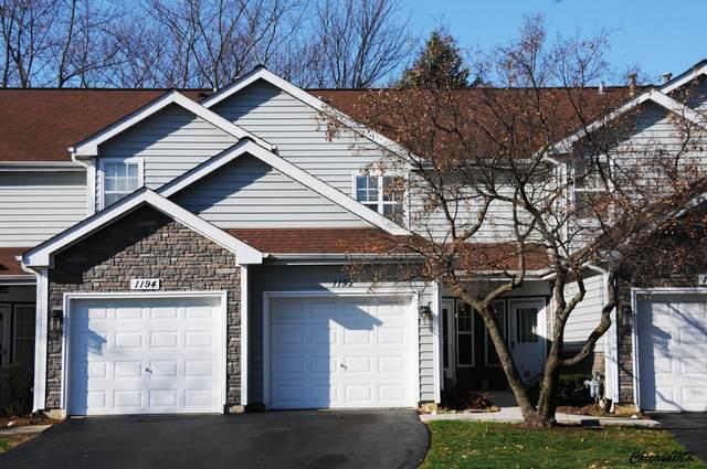1192 Regency Drive, Schaumburg, IL 60193 (MLS #10933698) :: John Lyons Real Estate