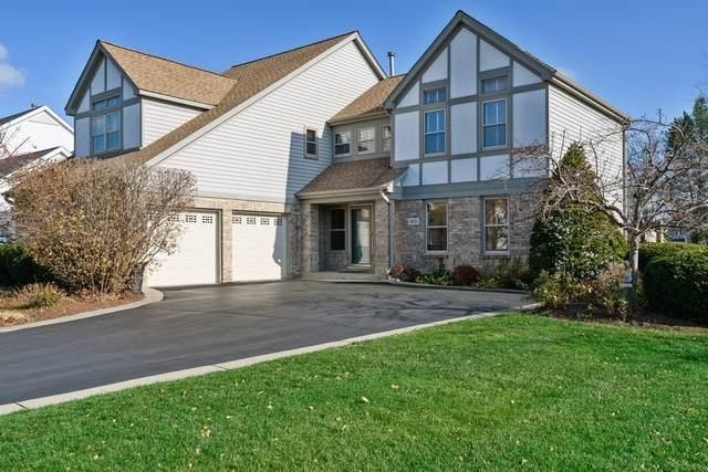 1601 Alemeda Lane, Mundelein, IL 60060 (MLS #10933774) :: Schoon Family Group