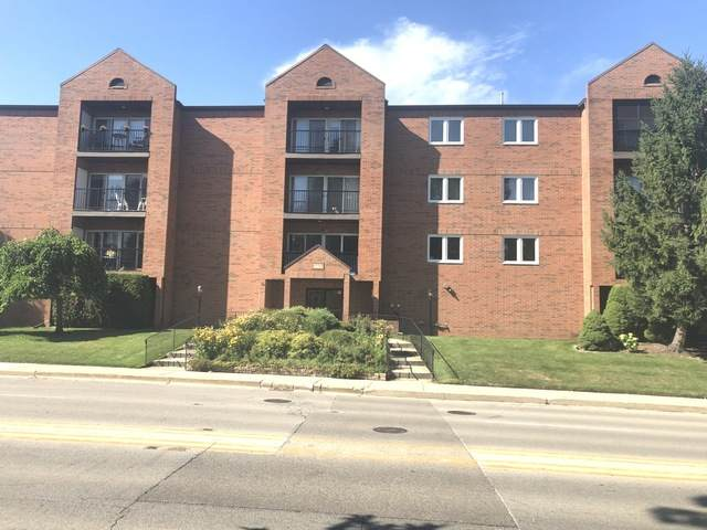 6550 W Gunnison Street #206, Harwood Heights, IL 60706 (MLS #10933844) :: Schoon Family Group