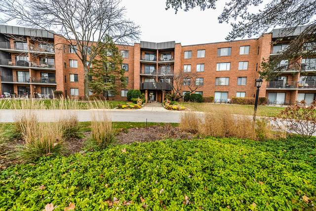 950 E Wilmette Road #206, Palatine, IL 60074 (MLS #10933933) :: BN Homes Group