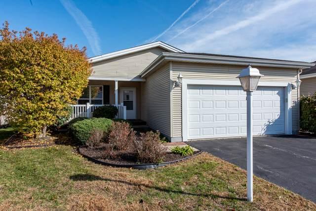 269 Rodeo Drive, Grayslake, IL 60030 (MLS #10934047) :: Lewke Partners