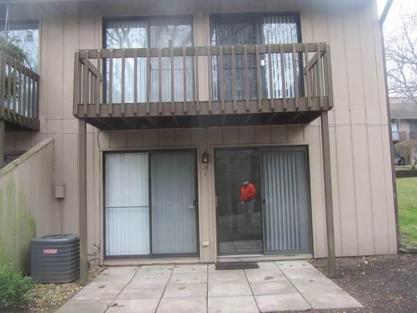 17 Saint Thomas Colony #1, Fox Lake, IL 60020 (MLS #10934159) :: The Wexler Group at Keller Williams Preferred Realty