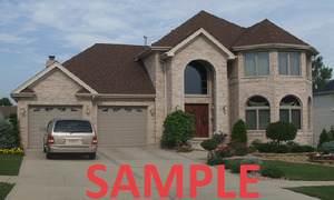 11500 S Elbridge Avenue, Palos Park, IL 60464 (MLS #10934790) :: Littlefield Group