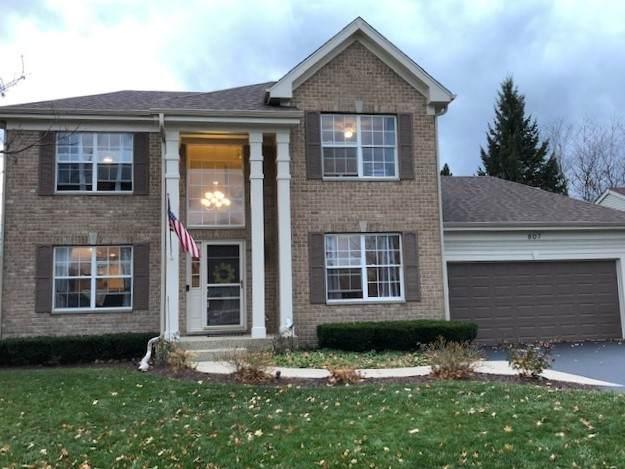 807 Preston Court, Lake Villa, IL 60046 (MLS #10935143) :: John Lyons Real Estate