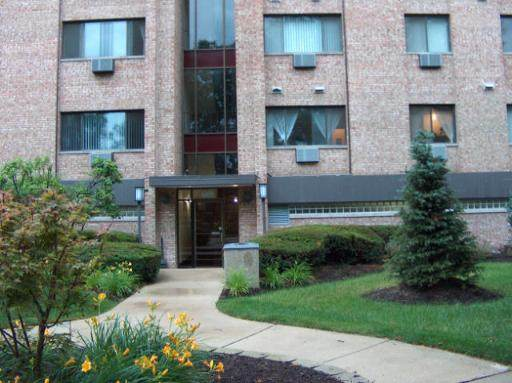 5348 N Cumberland Avenue #414, Chicago, IL 60656 (MLS #10935434) :: Property Consultants Realty