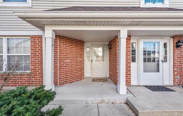 189 Birmingham Court, Roselle, IL 60172 (MLS #10937114) :: Helen Oliveri Real Estate