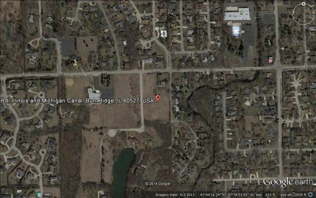 23 Buege Lane, Burr Ridge, IL 60527 (MLS #10937414) :: BN Homes Group