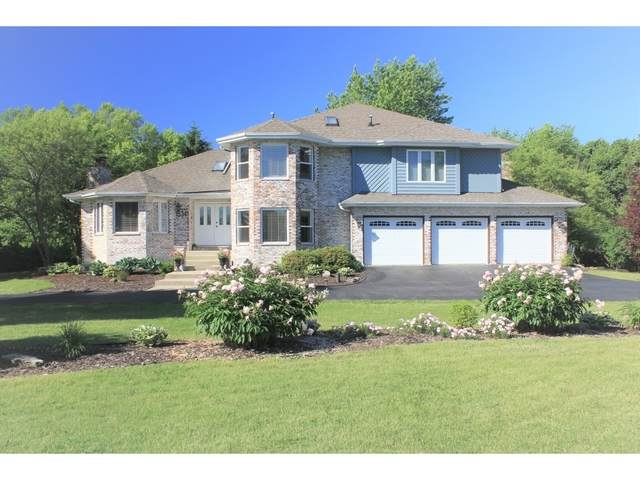 15341 W Pantigo Lane, Homer Glen, IL 60491 (MLS #10937601) :: Helen Oliveri Real Estate