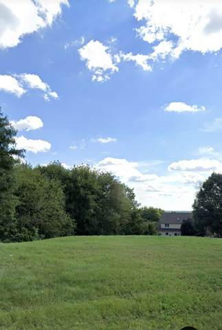 1355 Westley Lane, West Dundee, IL 60118 (MLS #10937735) :: Helen Oliveri Real Estate