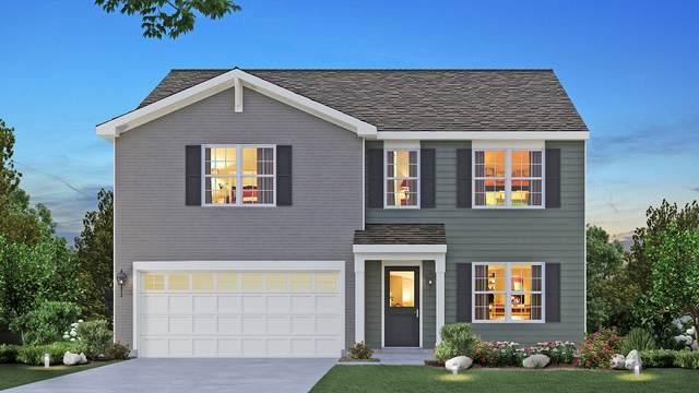 491 S Dollinger Drive, Romeoville, IL 60446 (MLS #10938272) :: Lewke Partners