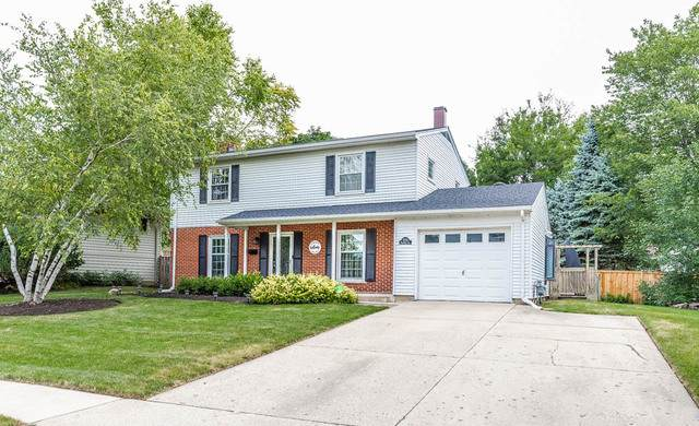 1773 California Avenue, Rolling Meadows, IL 60008 (MLS #10938812) :: Helen Oliveri Real Estate
