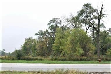 1051 Glenwood Dyer Road, Glenwood, IL 60425 (MLS #10938904) :: Lewke Partners