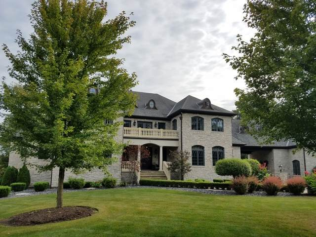 14011 Erin Lane, Homer Glen, IL 60491 (MLS #10939590) :: Helen Oliveri Real Estate