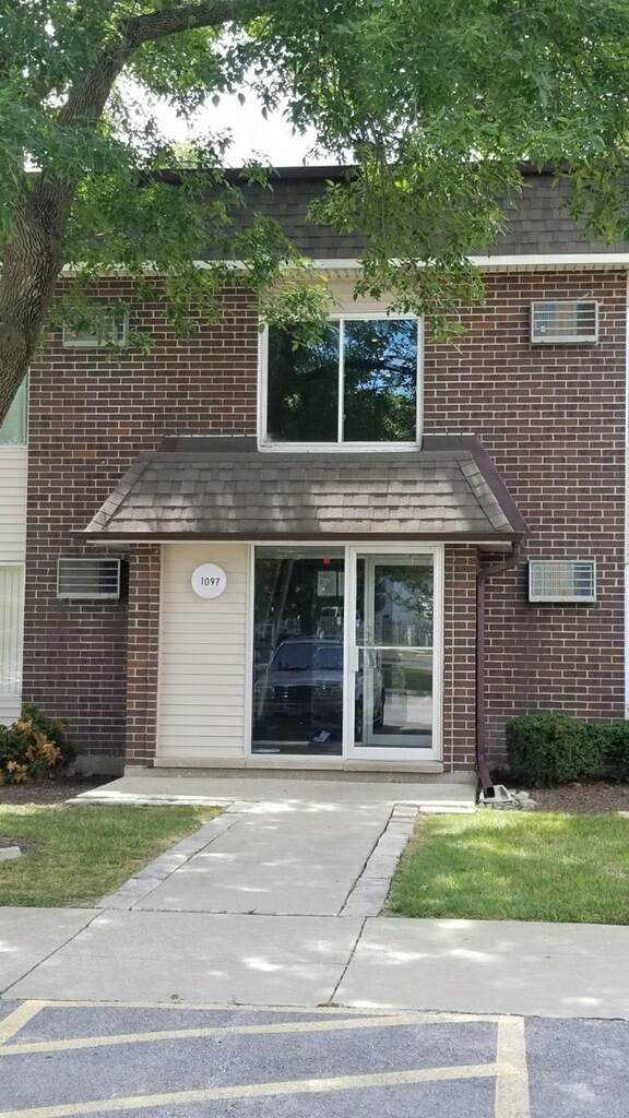 1097 Miller Lane #207, Buffalo Grove, IL 60089 (MLS #10939830) :: Helen Oliveri Real Estate