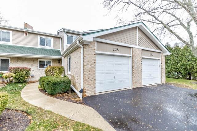 228 W Golfview Terrace, Palatine, IL 60067 (MLS #10940245) :: Helen Oliveri Real Estate