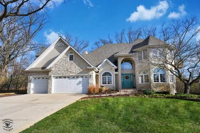 16843 S Brentwood Court, Homer Glen, IL 60491 (MLS #10940271) :: BN Homes Group