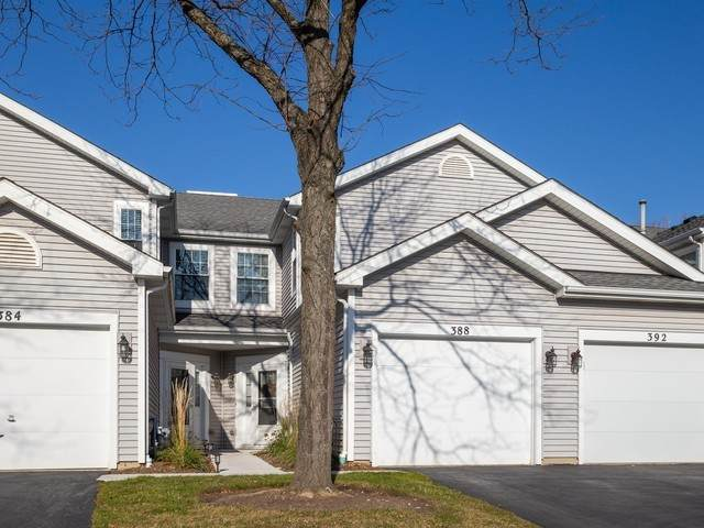 388 Glen Byrn Court #10388, Schaumburg, IL 60194 (MLS #10940569) :: The Wexler Group at Keller Williams Preferred Realty