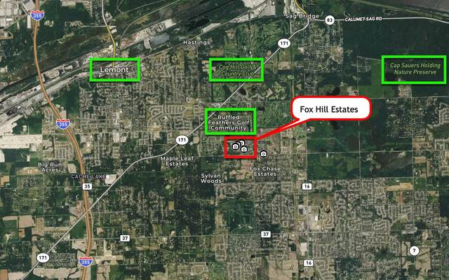 00000 Fox Hill Road, Lemont, IL 60439 (MLS #10941009) :: Touchstone Group