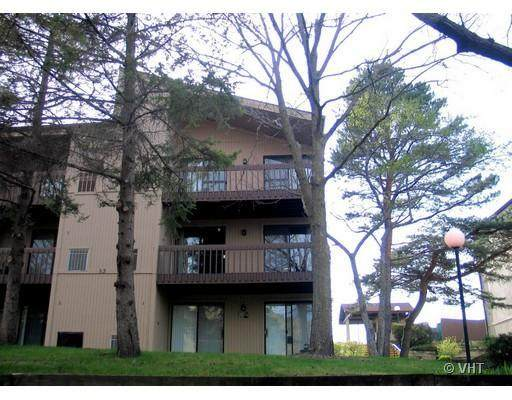 53 Oak Hill Colony #9, Fox Lake, IL 60020 (MLS #10941807) :: The Wexler Group at Keller Williams Preferred Realty