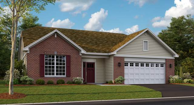 11819 Hubbe Court, Huntley, IL 60142 (MLS #10943887) :: John Lyons Real Estate