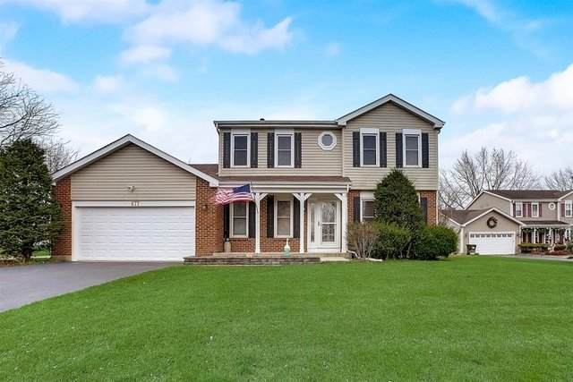 677 Auburn Court, Crystal Lake, IL 60014 (MLS #10943931) :: John Lyons Real Estate