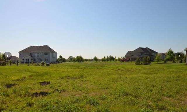 1204 Bush Boulevard, Bolingbrook, IL 60490 (MLS #10944230) :: Lewke Partners