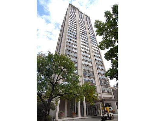1455 N Sandburg Terrace #1109, Chicago, IL 60610 (MLS #10944659) :: The Wexler Group at Keller Williams Preferred Realty
