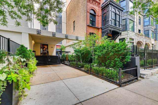 1339 N Dearborn Street 11H, Chicago, IL 60610 (MLS #10946147) :: Property Consultants Realty