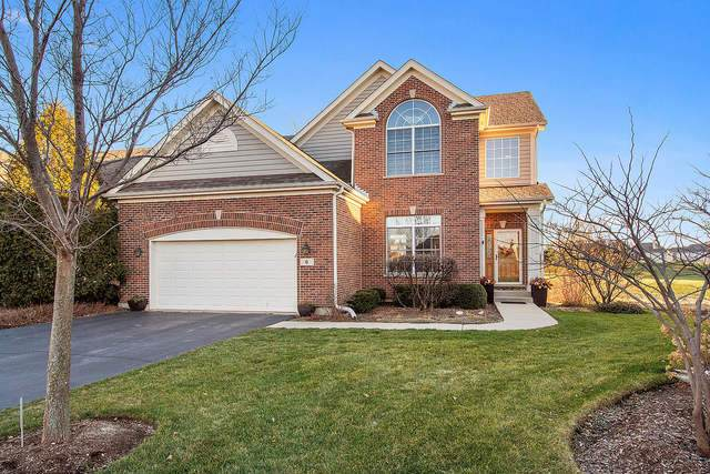 6 White Birch Court, Lake In The Hills, IL 60156 (MLS #10952105) :: Schoon Family Group