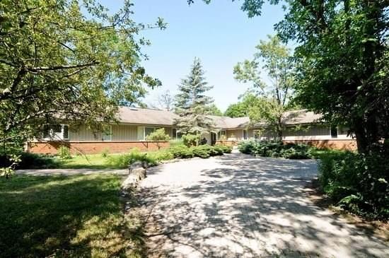 18 Alexandra Drive, Mettawa, IL 60048 (MLS #10952710) :: Schoon Family Group