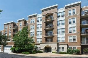 455 W Wood Street #213, Palatine, IL 60067 (MLS #10953942) :: The Wexler Group at Keller Williams Preferred Realty