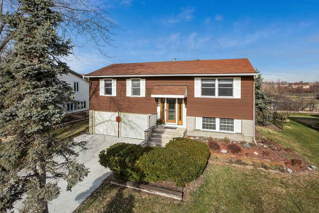 8160 W Evergreen Drive, Frankfort, IL 60423 (MLS #10954889) :: Schoon Family Group