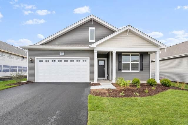 979 Crestview Lane, Pingree Grove, IL 60140 (MLS #10955990) :: Suburban Life Realty