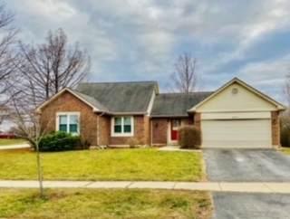 2955 Fox Hill Road, Aurora, IL 60504 (MLS #10958205) :: Jacqui Miller Homes