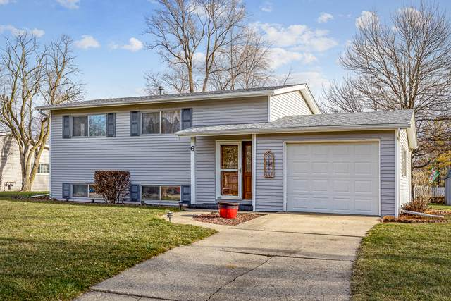 6 Crescent Court, Montgomery, IL 60538 (MLS #10958966) :: The Dena Furlow Team - Keller Williams Realty
