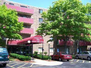 1463 Mercury Drive #514, Schaumburg, IL 60193 (MLS #10959765) :: The Wexler Group at Keller Williams Preferred Realty