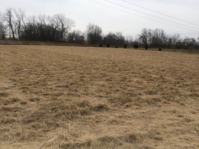 33 River Run /Lot 18 Cross Creek Sub. Road, Downs, IL 61736 (MLS #10959899) :: Janet Jurich
