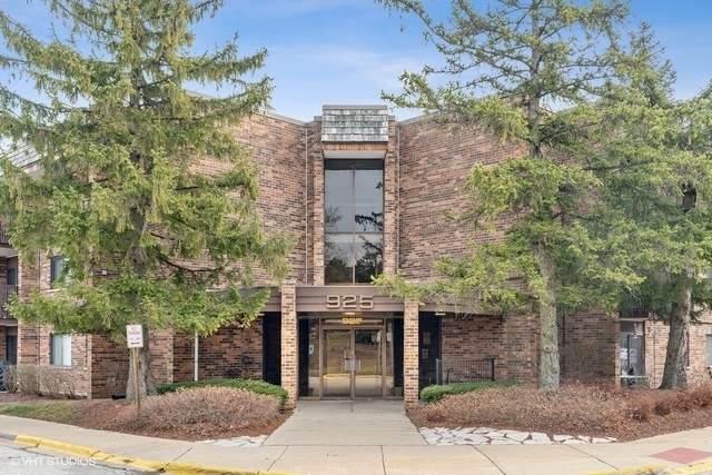 925 Spring Hill Drive #115, Northbrook, IL 60062 (MLS #10960385) :: The Wexler Group at Keller Williams Preferred Realty