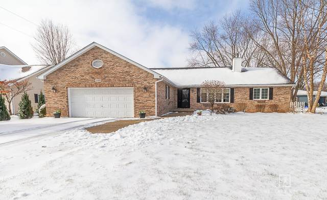 599 Holiday Drive, Lake Holiday, IL 60552 (MLS #10961151) :: The Dena Furlow Team - Keller Williams Realty