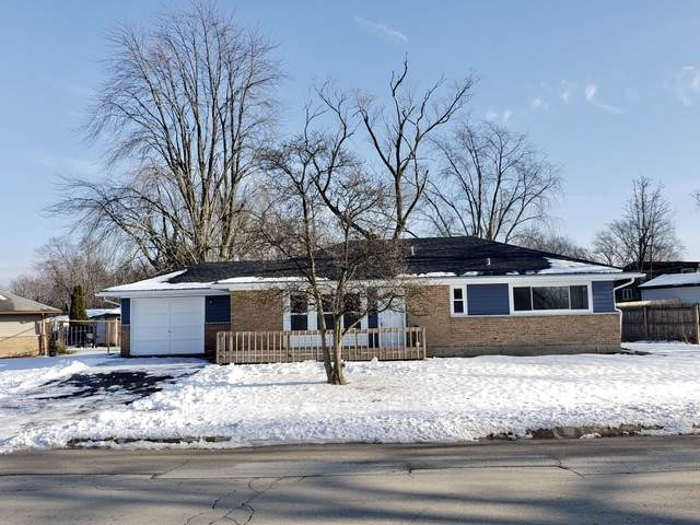 141 Well Street, Park Forest, IL 60466 (MLS #10965338) :: Schoon Family Group