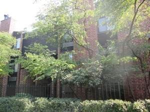 2225 Halsted Street - Photo 1