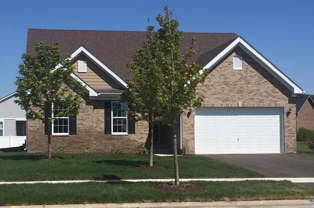 16424 S Wilson Lane, Plainfield, IL 60586 (MLS #10965737) :: Suburban Life Realty