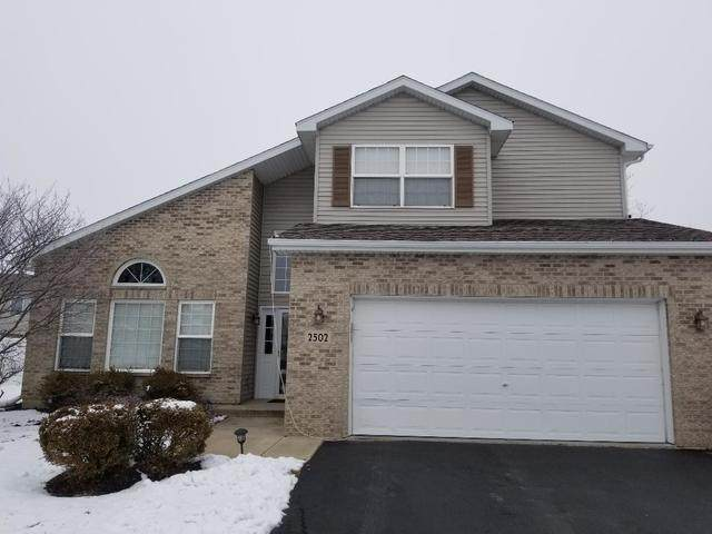2502 Water Falls Court, Plainfield, IL 60544 (MLS #10966171) :: Schoon Family Group