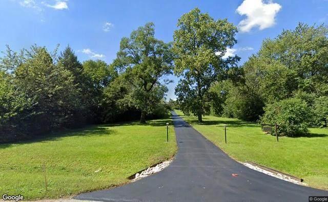6550 S Richmond Avenue, Willowbrook, IL 60527 (MLS #10966840) :: Janet Jurich