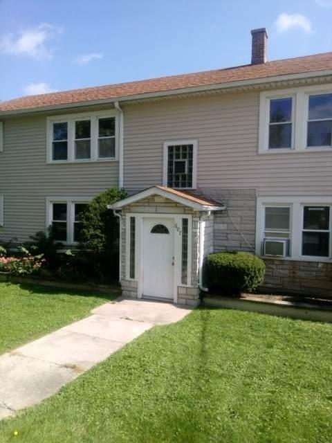 607 Walnut Street, Lemont, IL 60439 (MLS #10967747) :: Schoon Family Group